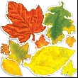 Accent Punch-Outs Autumn Leaves (60 pieces)